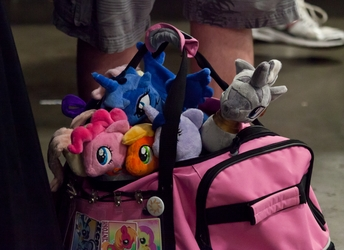 Bag O' Ponies