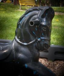 Black Playground Horse