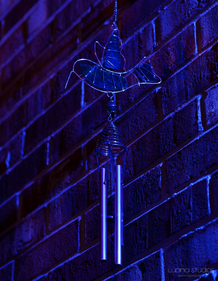 Blue Light Experiment 2