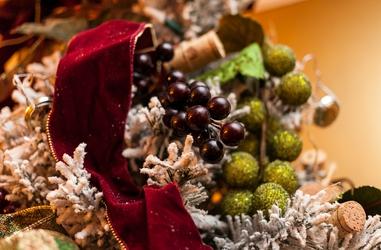 Christmas Grapes
