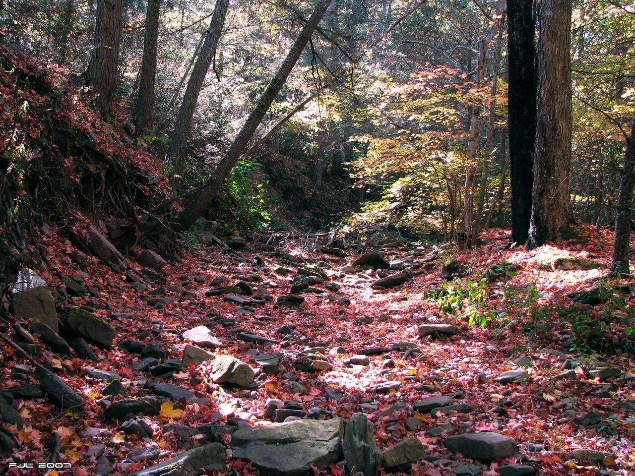 Crimson Creek