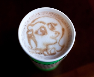 Cup O Joe - Fluttershy Latte Art