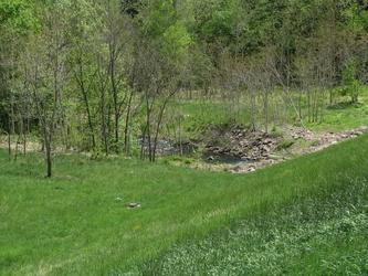Drainage Stream