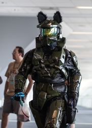 Furry Master Chief
