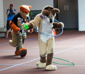 Fursuit Games - Relay Husky