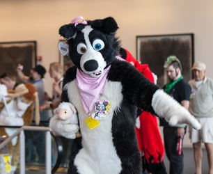 Fursuit Parade - April Collie