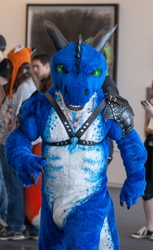 Fursuit Parade - Drakien