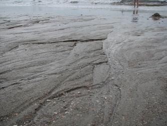 Myrtle Beach (40)
