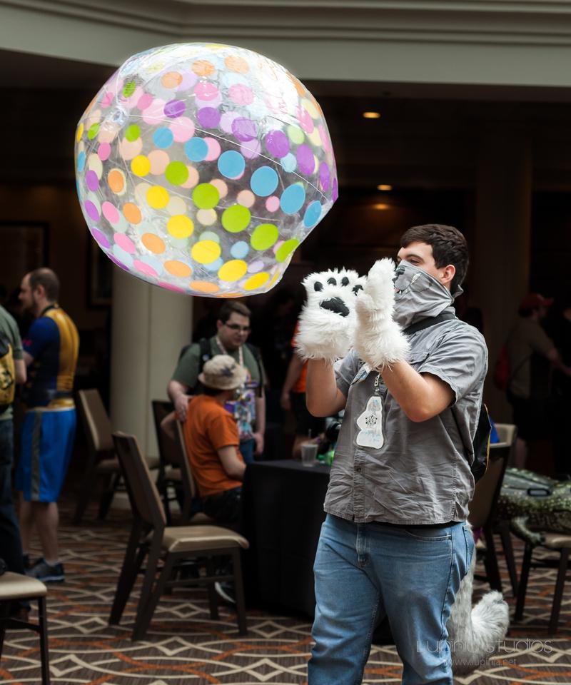 Puppy-Ball!