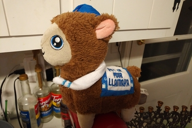 Put On Your Llamaka