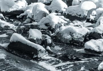 Snowy Chaos