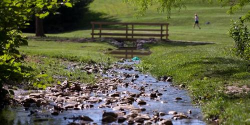 Arboretum Stream