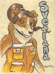 Caribou Badge