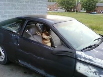 Driving Buddy