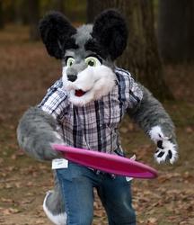Fursuit Frisbee