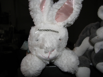 Reconditioned Bunny