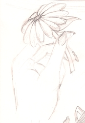 Sketches Page (Flower)