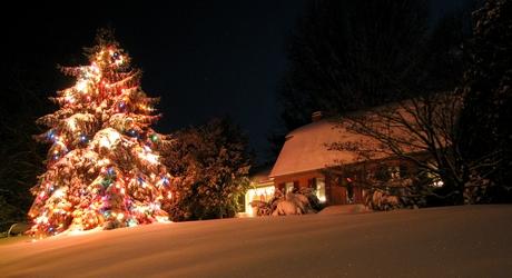 Snowmageddon Christmas Lights
