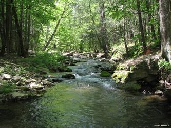 Spring Stream 3
